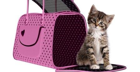 РЖД - правила перевозки домашних животных